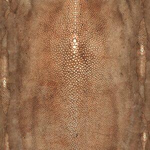 Behang Precieux uit de UN MONDE PARFAIT-collectie van Lelievre voor Lièvre