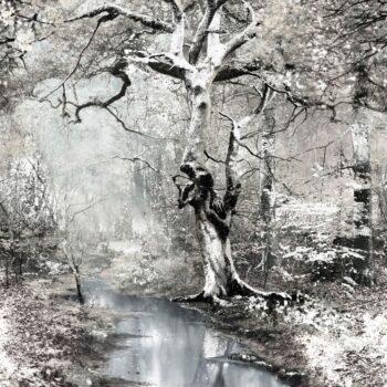 Behang Sous Bois uit de POP ROCK-collectie van Lelievre voor Lièvre