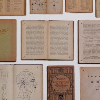 Behang Biblioteca uit de Biblioteca-collectie van Arte