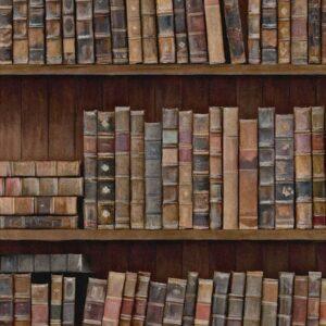 Behang Book Shelves uit de Eclectic-collectie van Mind The Gap