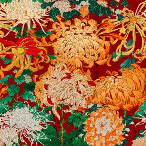 Behang Chrysanthemums uit de Florilegium-collectie van Mind The Gap