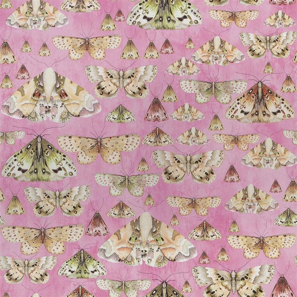 Behang Issoria uit de Jardin des Plantes Wallpaper-collectie van Designers Guild